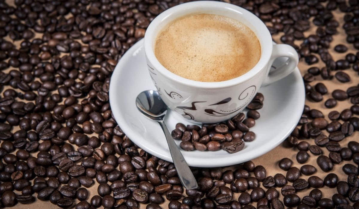 a cup of regular cappuccino with a lot of coffee beans in the background